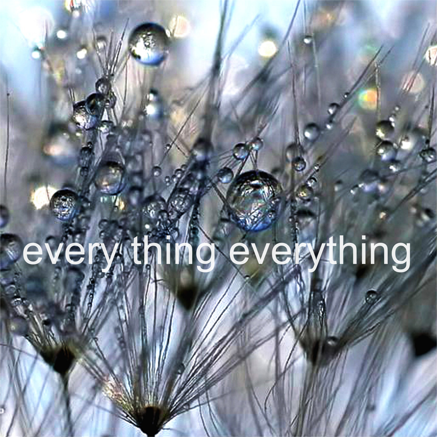 Stephanie Rearick - every thing everything